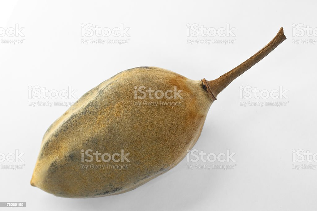 Baobab frutas - foto de stock