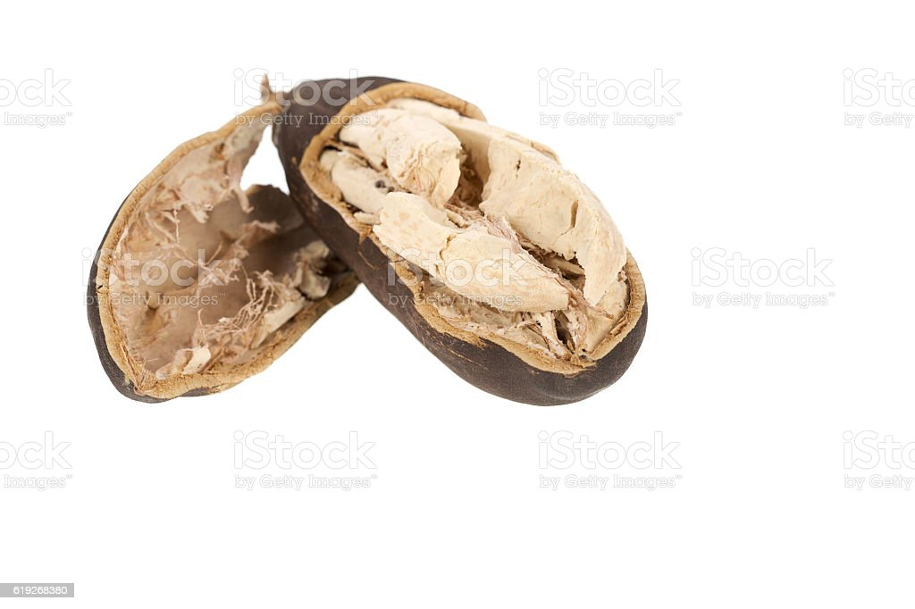 Baobab fruit stock photo