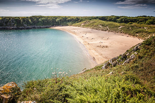 Barafundle Bay Pembrokeshire Barafundle Beach Pembrokeshire bay of water stock pictures, royalty-free photos & images