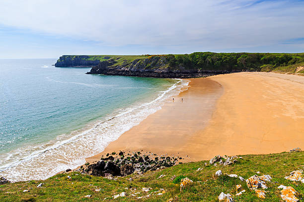 Barafundle Bay Wales Overlooking the stunning beach at Barafundle Bay on the Pembrokeshire coast of South Wales UK Europe south wales stock pictures, royalty-free photos & images