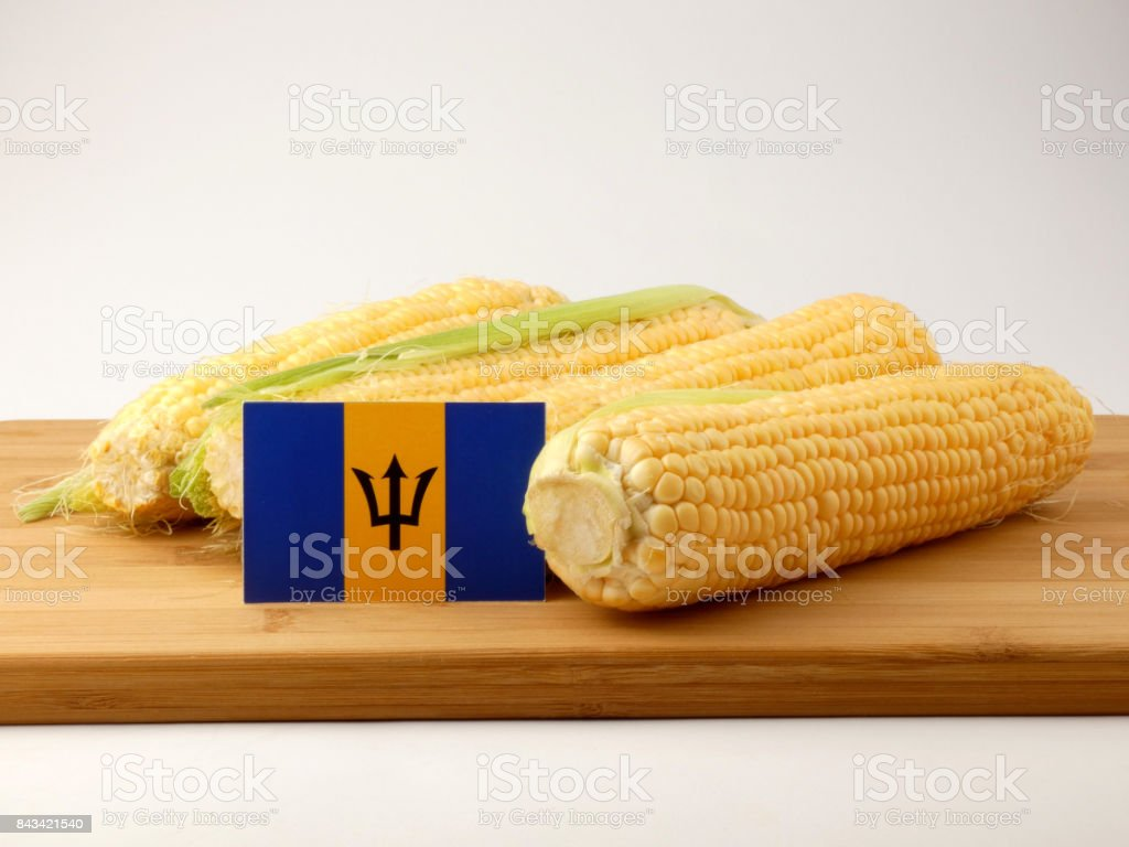 Barbados flag on a wooden panel with corn isolated on a white background stock photo