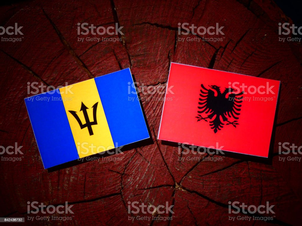 Barbados flag with Albanian flag on a tree stump isolated stock photo