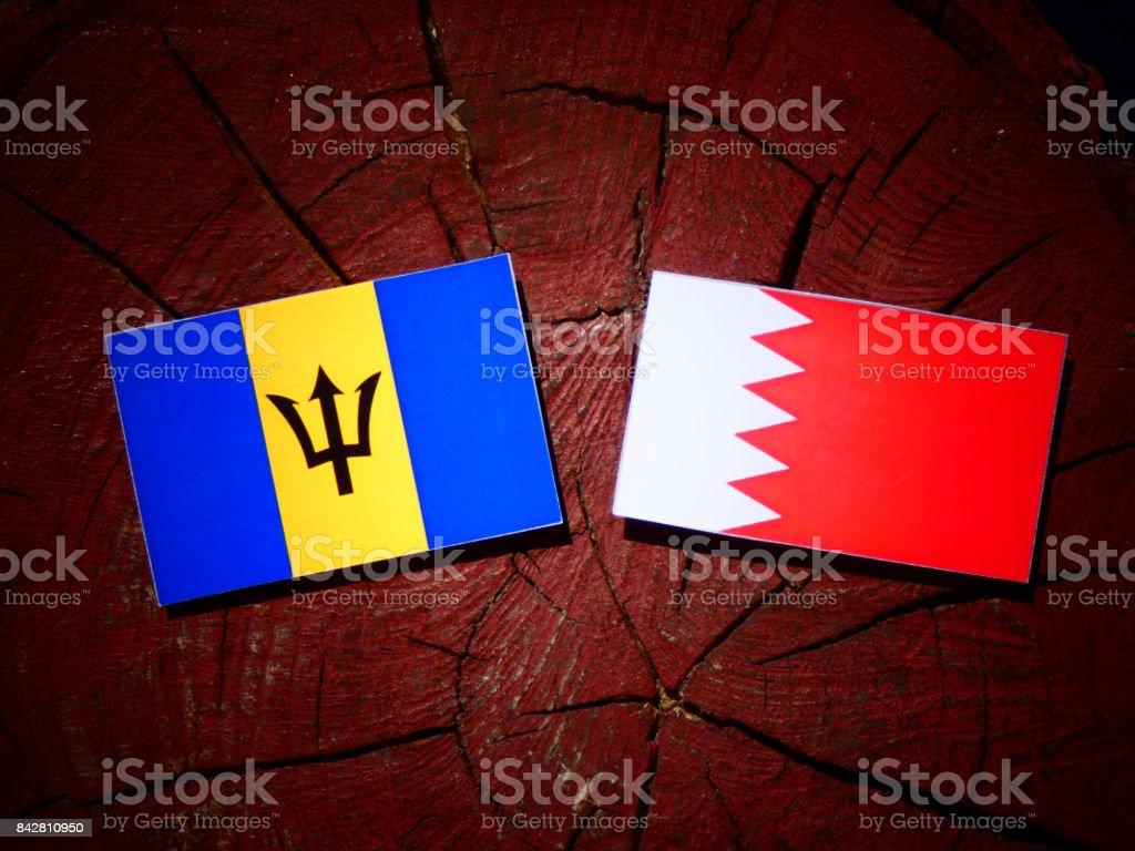 Barbados flag with Bahraini flag on a tree stump isolated stock photo