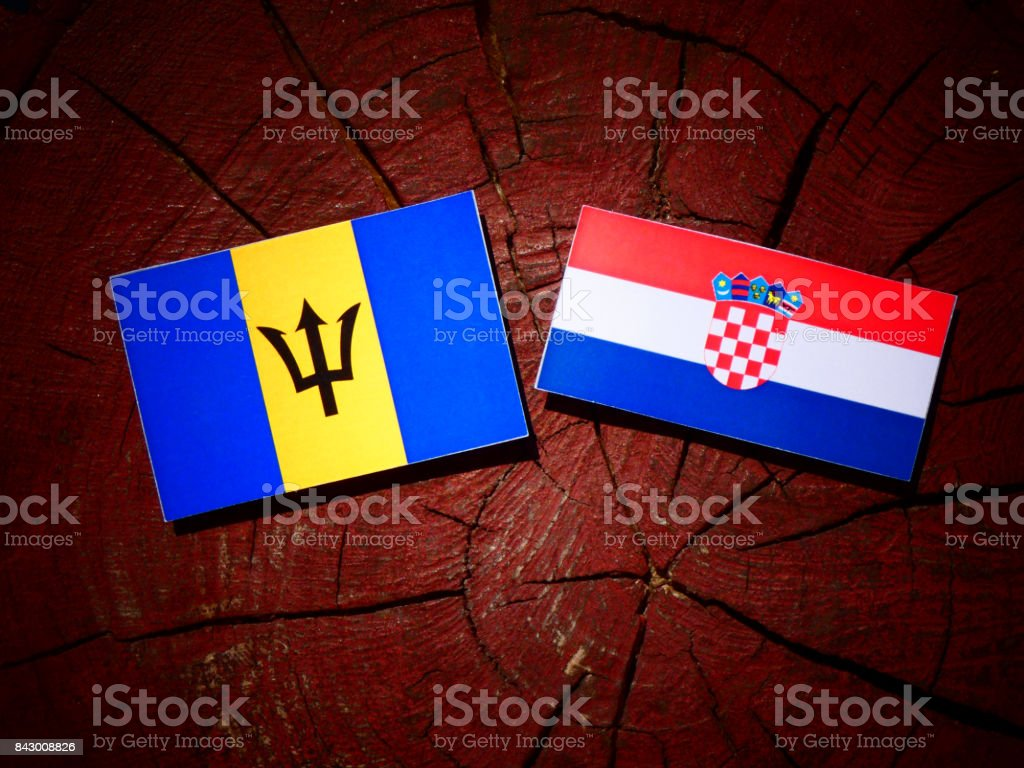 Barbados flag with Croatian flag on a tree stump isolated stock photo
