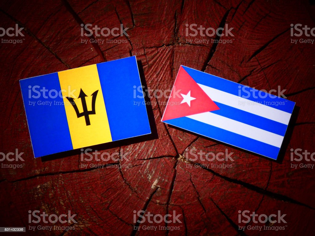 Barbados flag with Cuban flag on a tree stump isolated stock photo