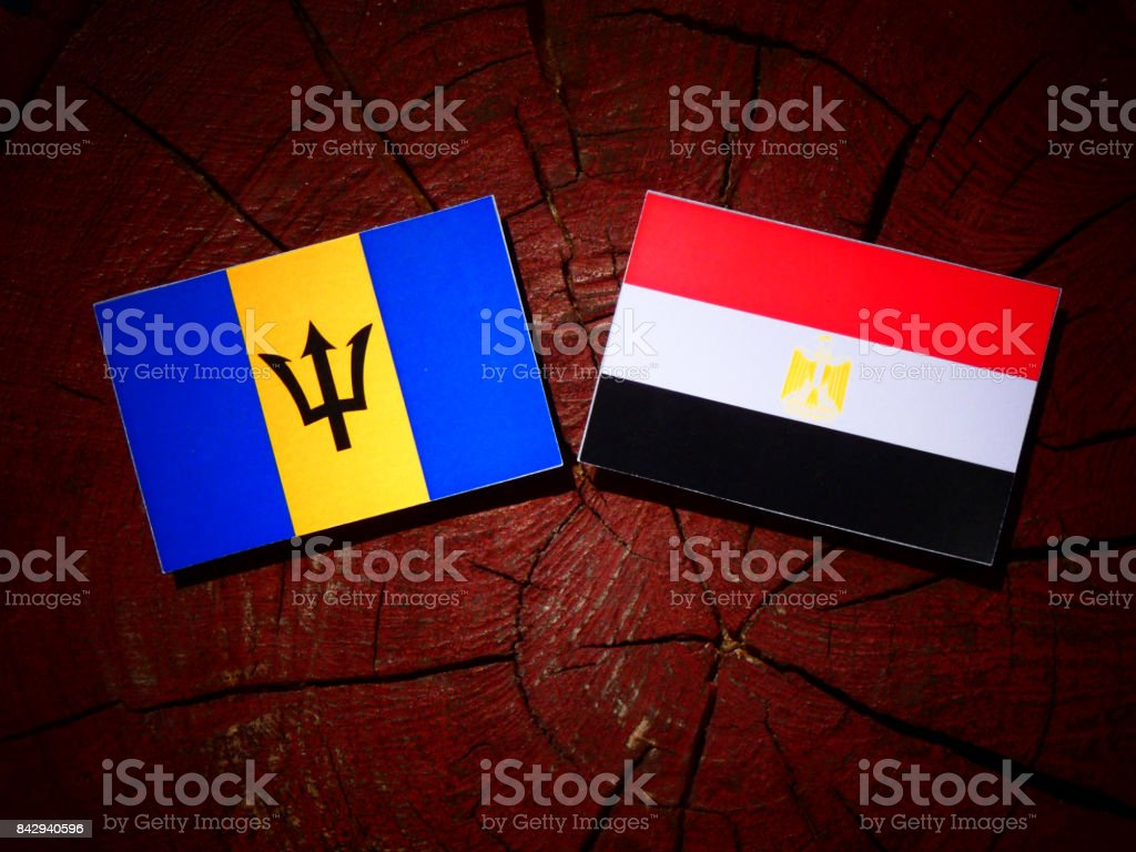 Barbados flag with Egyptian flag on a tree stump isolated stock photo