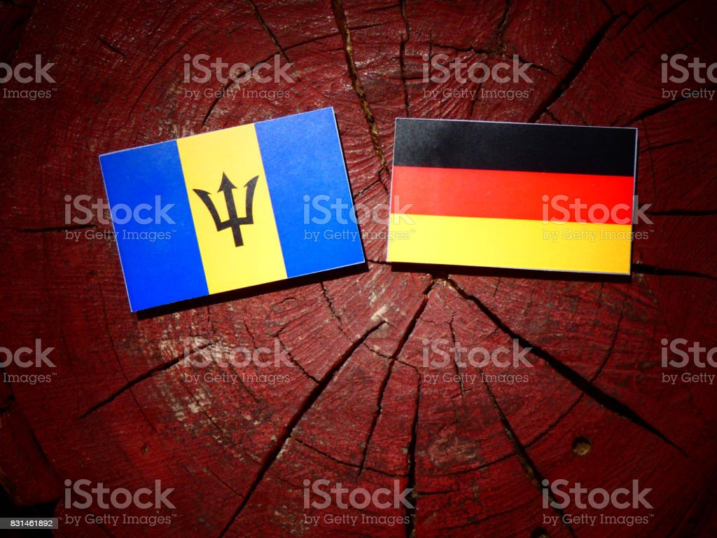 Barbados flag with German flag on a tree stump isolated stock photo