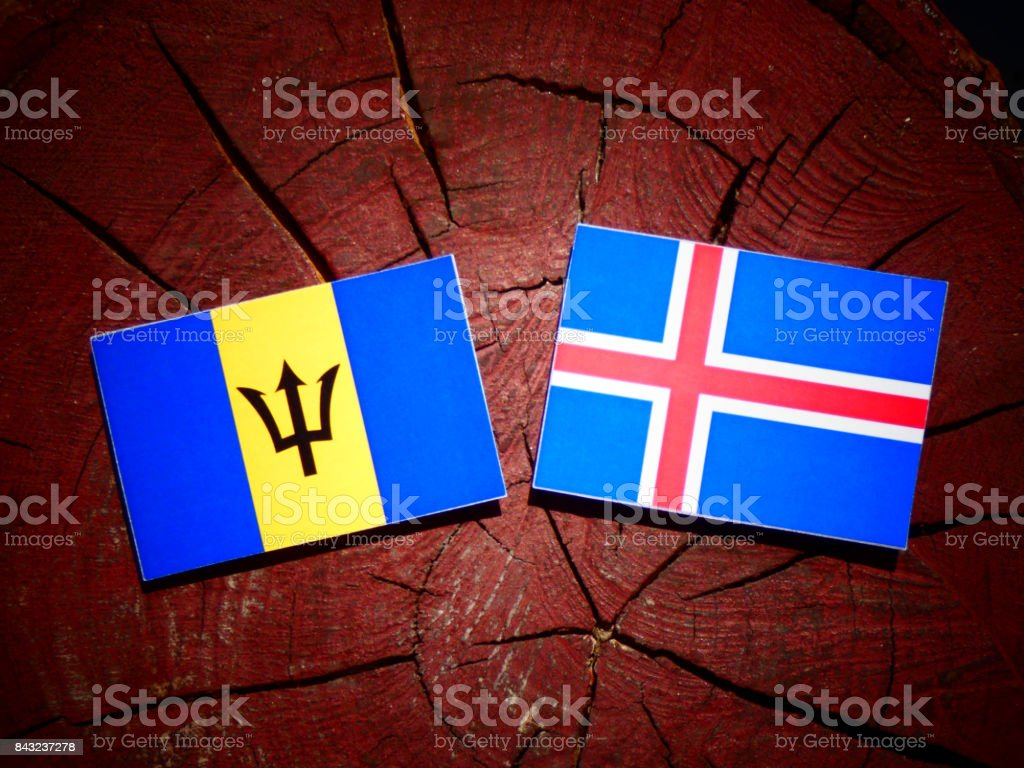 Barbados flag with Icelandic flag on a tree stump isolated stock photo