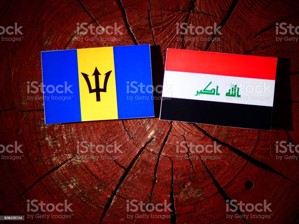 Barbados flag with Iraqi flag on a tree stump isolated stock photo