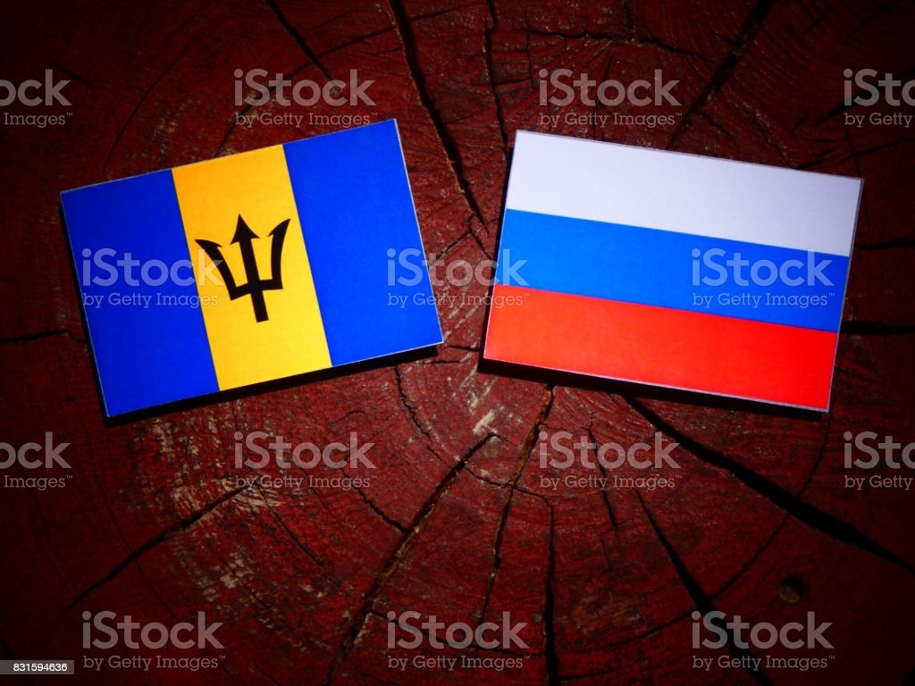 Barbados flag with Russian flag on a tree stump isolated stock photo