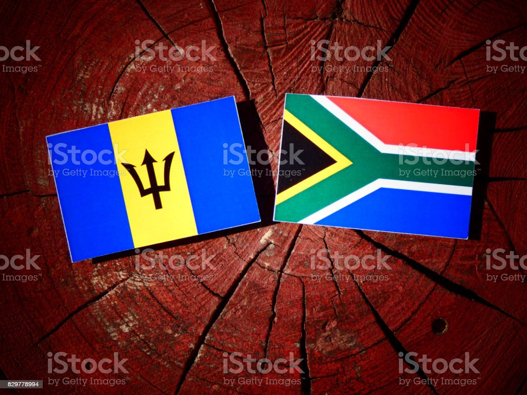 Barbados flag with South African flag on a tree stump isolated stock photo