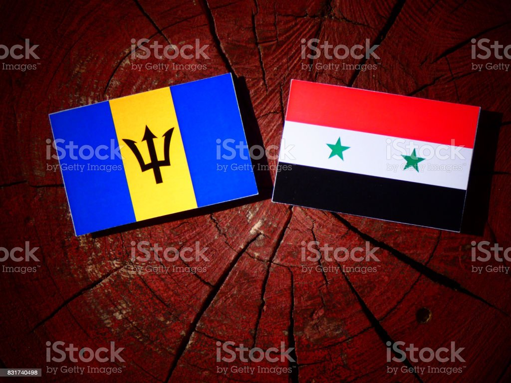 Barbados flag with Syrian flag on a tree stump isolated stock photo