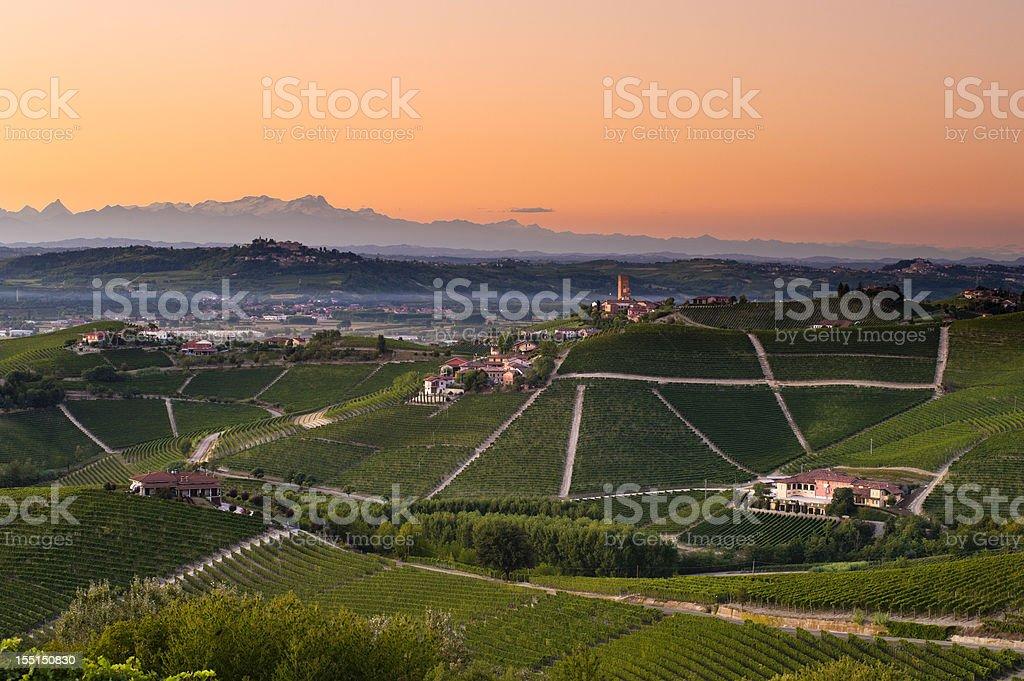 Barbaresco vineyards at dusk stock photo
