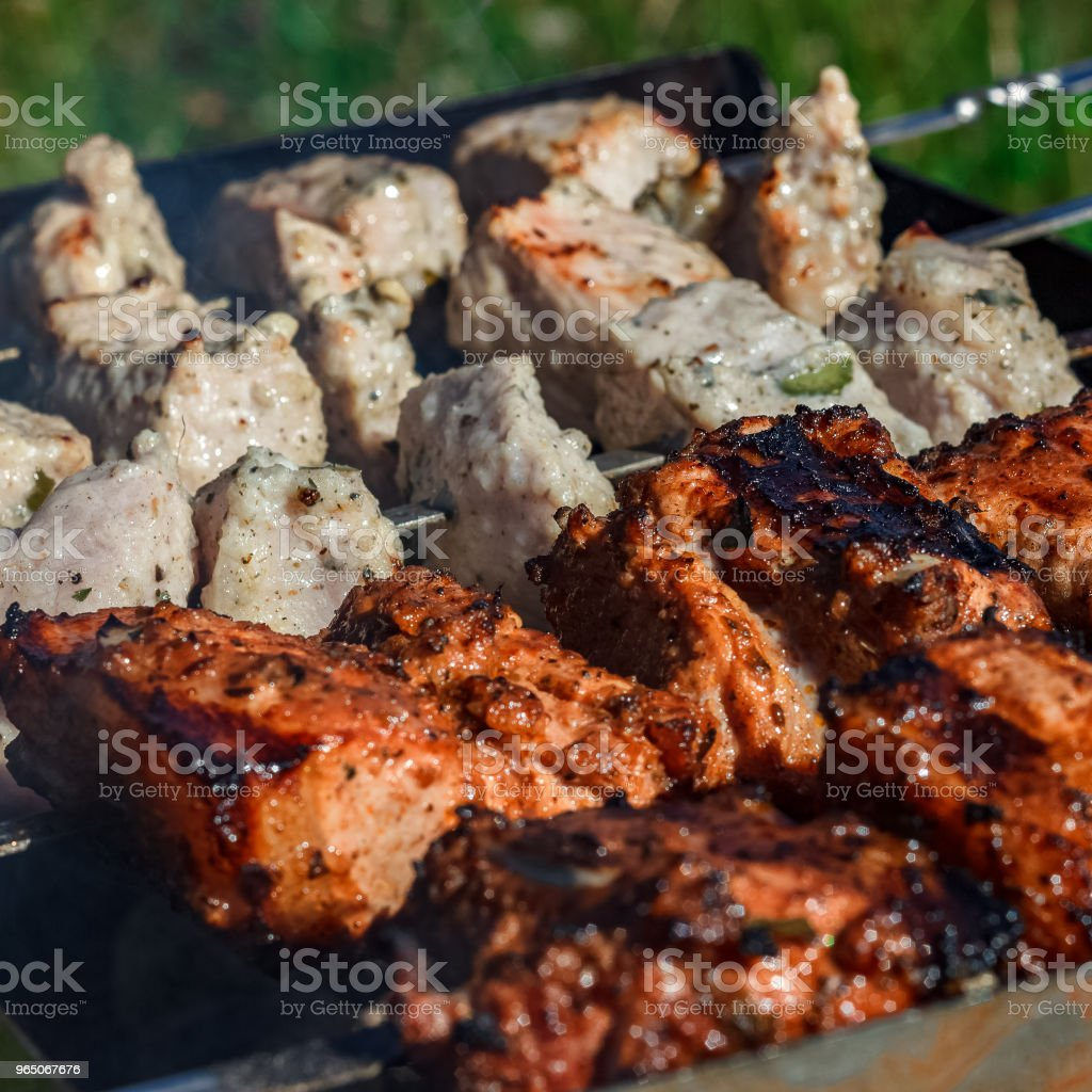 Barbecue grill meat zbiór zdjęć royalty-free