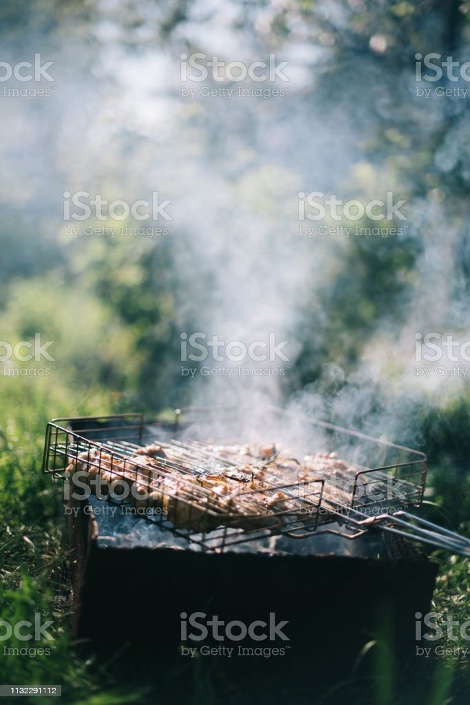 Barbecue on a summer day in the garden. Picnic outdoor recreation...
