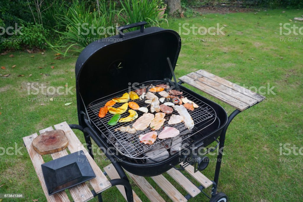 Barbecue party - Delicious meat with vegetable over the coals on the grill. royalty-free stock photo