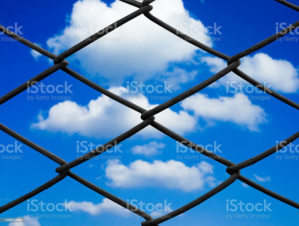 Barbed royalty-free stock photo