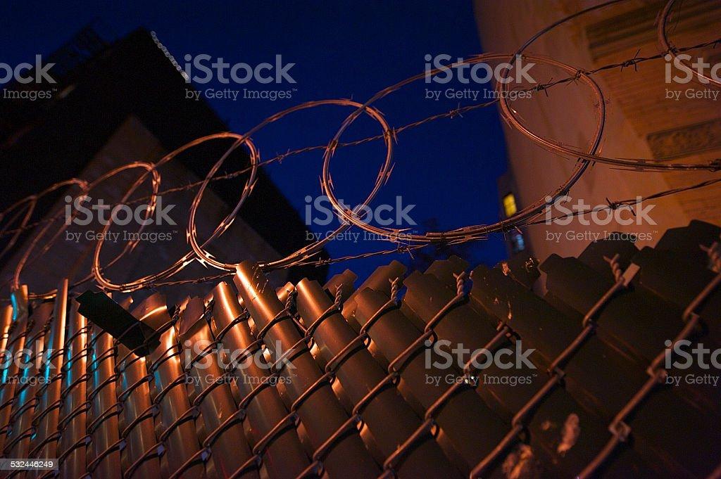 Barbed Lizenzfreies stock-foto