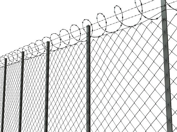 barbed wire 02 stock photo
