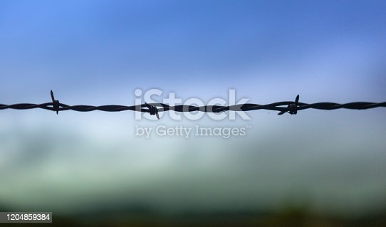 barbed wire agains a blue sky