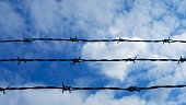 istock Barbed Wire Against Blue Sky 1279390642