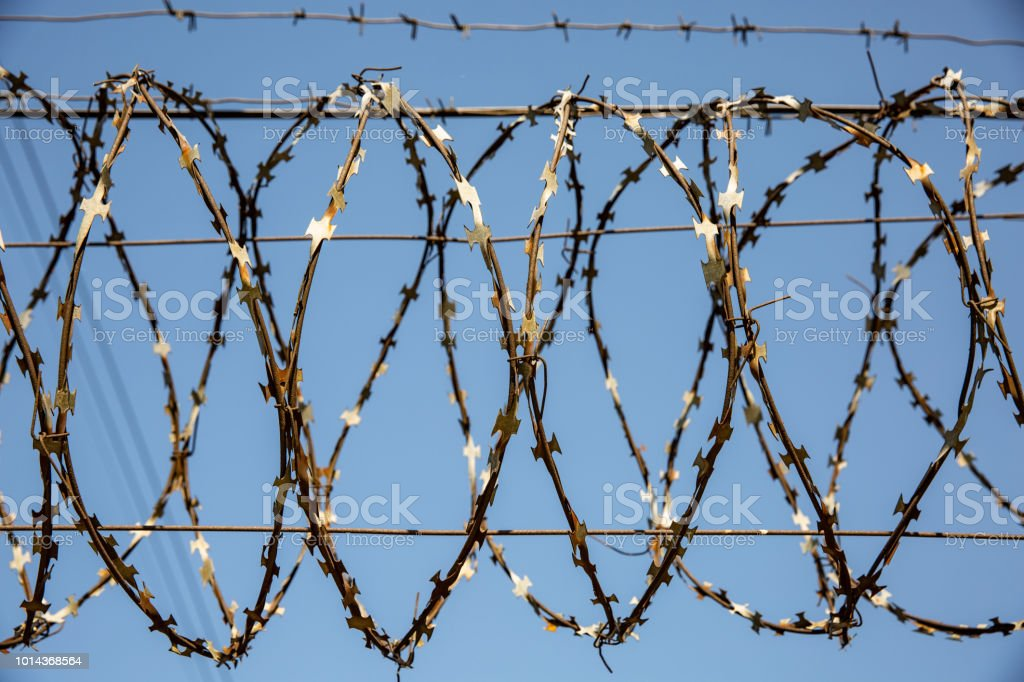 Barbed wire against the blue sky. Barbed wire on fence with blue sky...