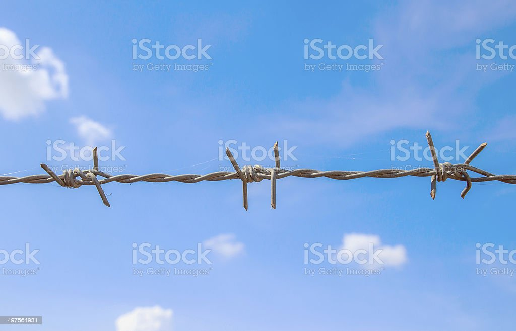 Barbed wire and blue sky stock photo