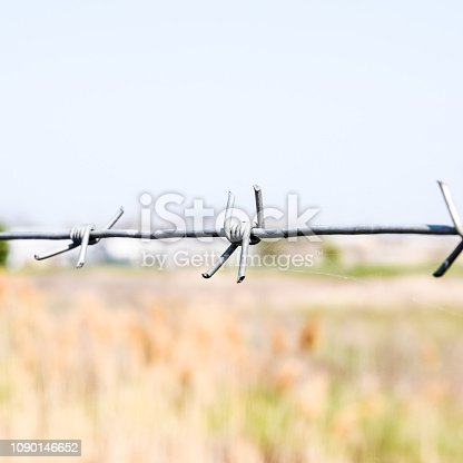 91708255 istock photo Barbed wire. Barbed wire fencing. The constraint symbol. 1090146652