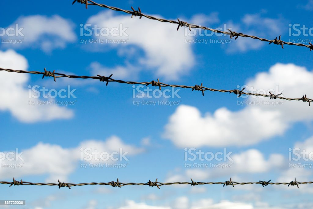 Barbed wire. Barbed wire on fence with blue sky and light clouds.
