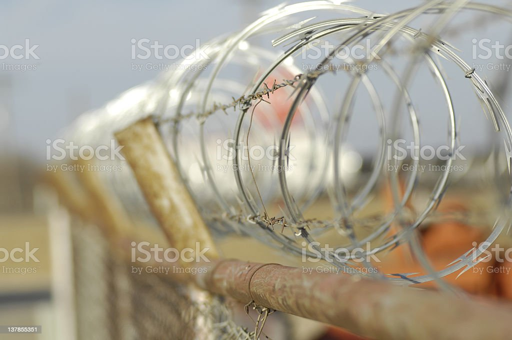 Barbed Wire Border Fence royalty-free stock photo