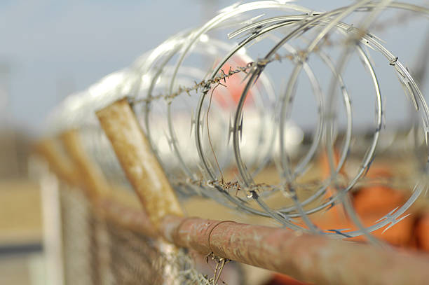 Barbed Wire Border Fence Barbed Wire Border Fence border patrol stock pictures, royalty-free photos & images