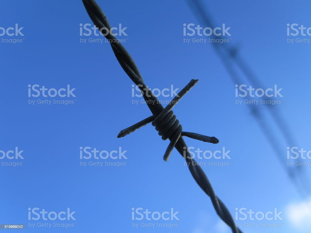 Barbed Wire Diagonal against Blue sky close up stock photo