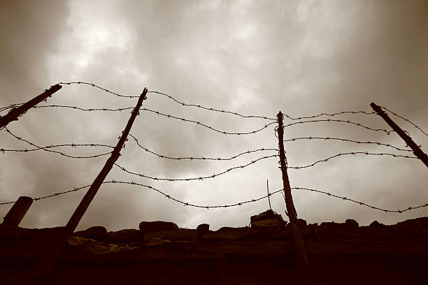 Barbed wire fence against grey sky stock photo