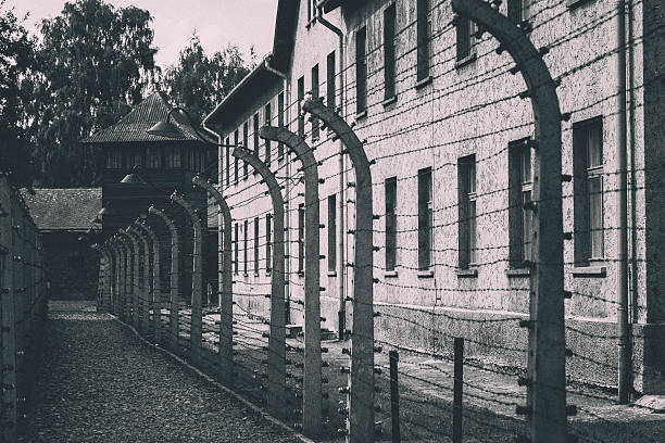 barbed wire fence at auschwitz - shoah photos et images de collection