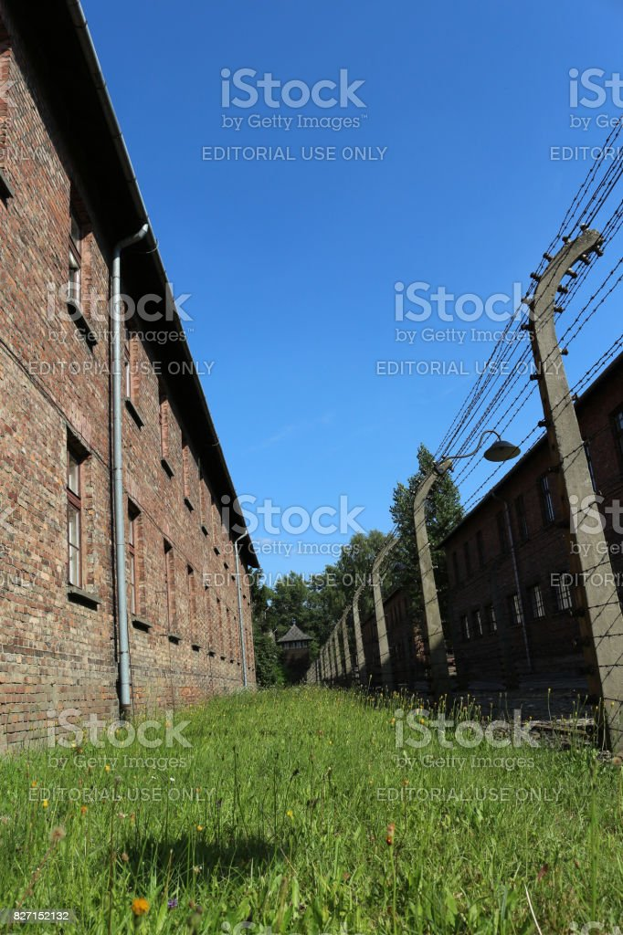 Barbed wire fence at the nazi extermination camp. stock photo