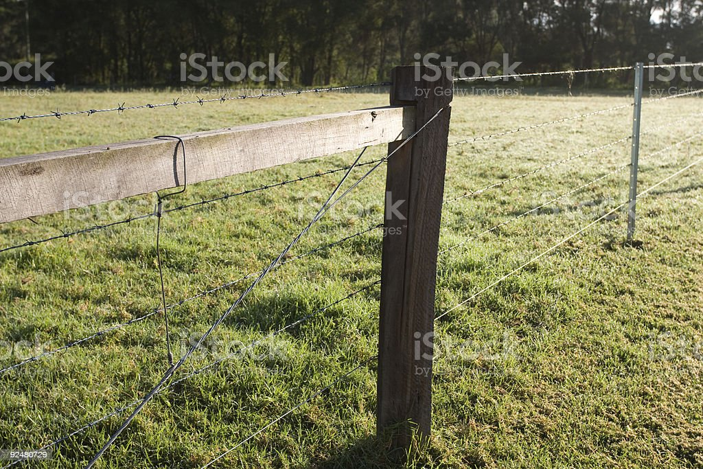 Barbed wire fence on green grass royalty-free stock photo