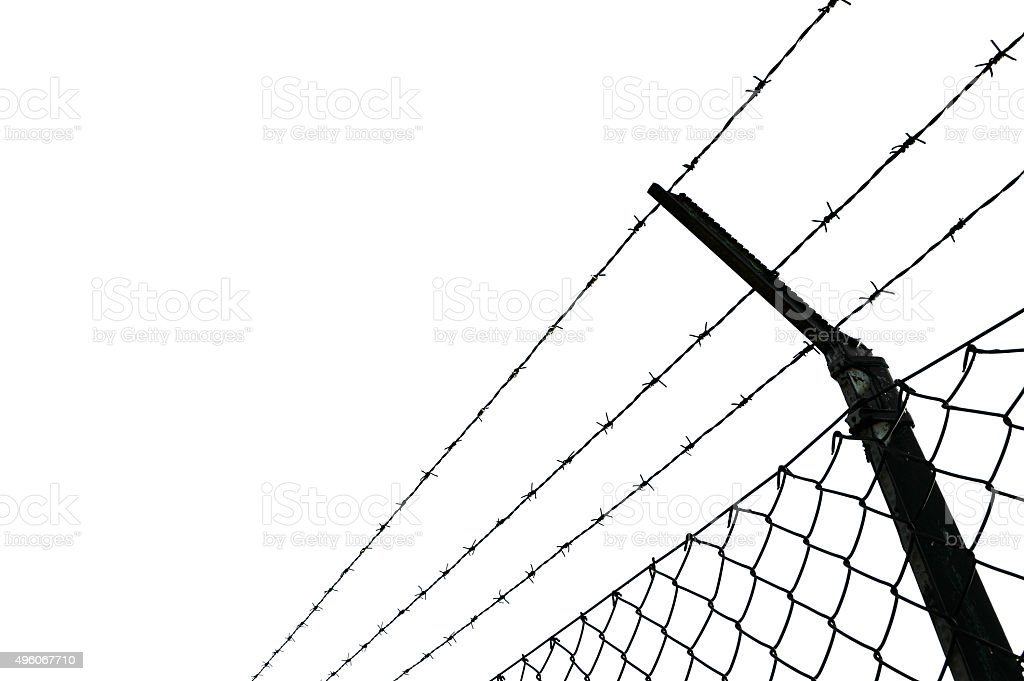 Barbed wire fence stock photo