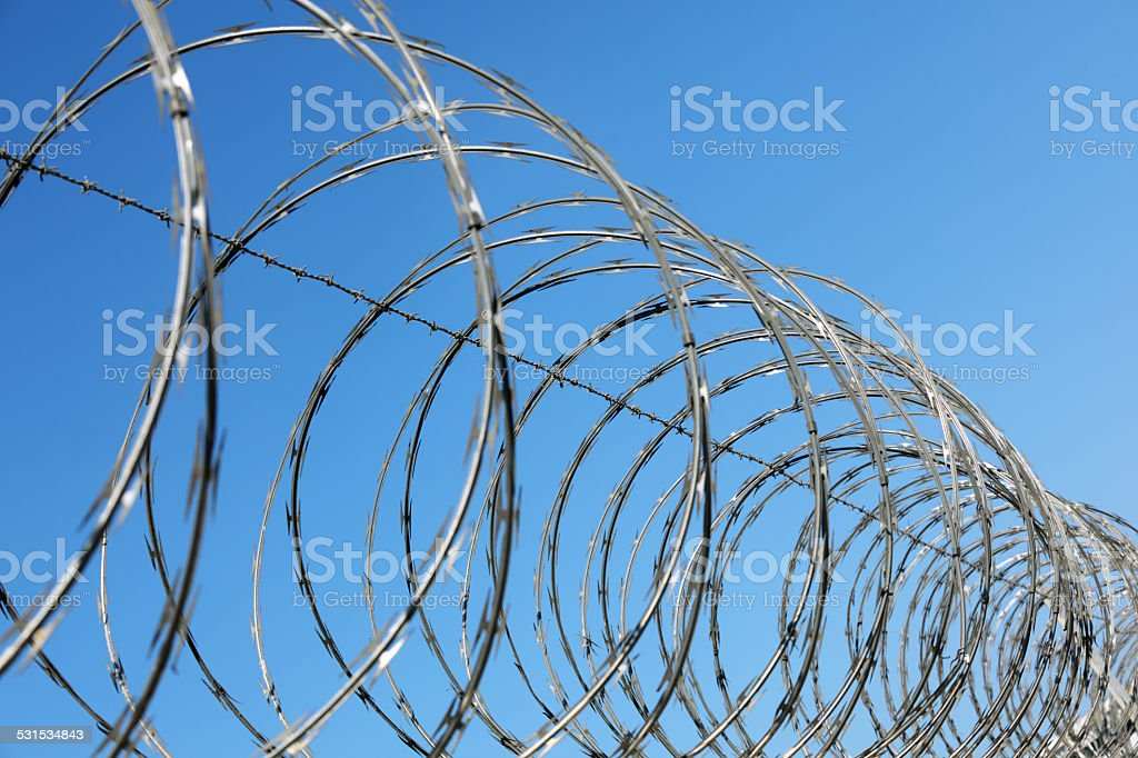 Barbed Wire Fence stock photo 531534843 | iStock
