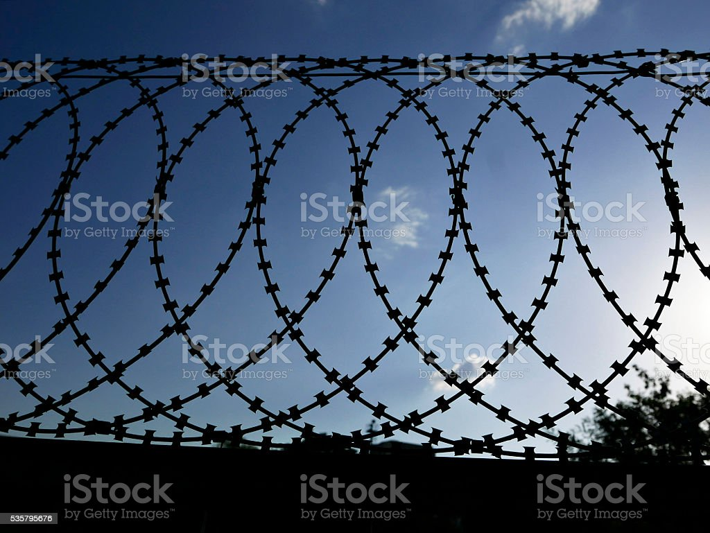 Barbed Wire Fence Stock Photo & More Pictures of Adversity | iStock