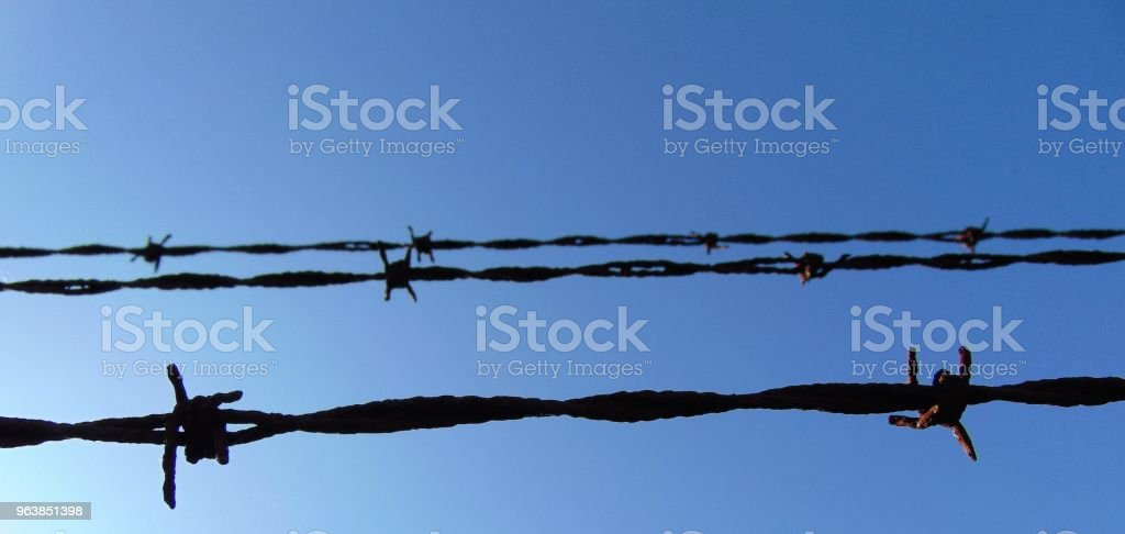 Barbed Wire Fence - Royalty-free Barbed Wire Stock Photo