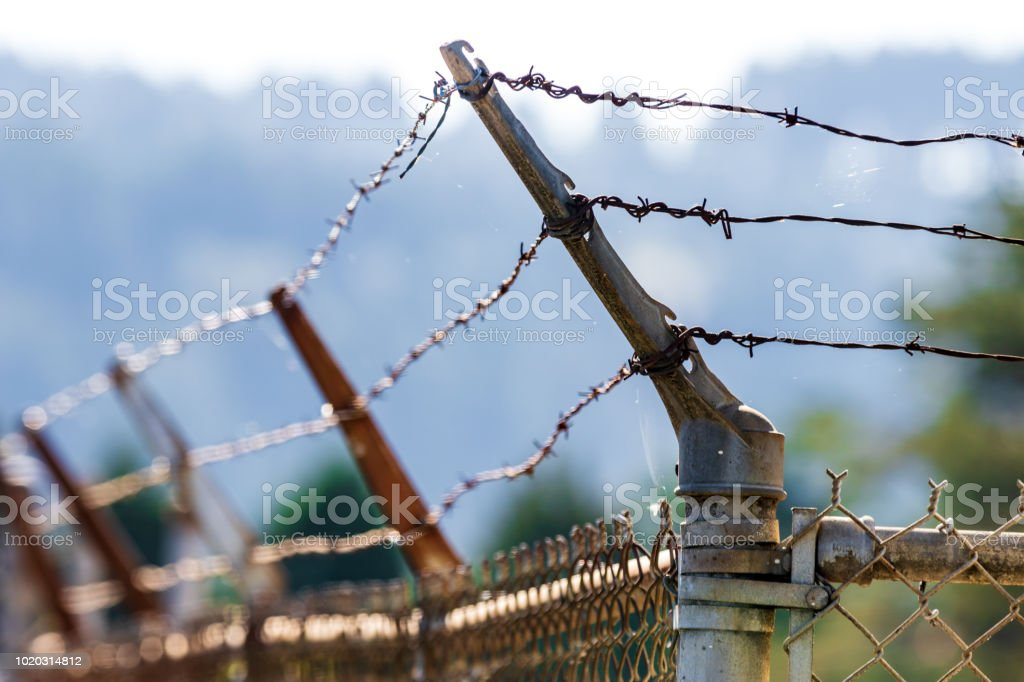 Barbed Wire Fence Shining In The Sun Stock Photo & More Pictures of ...