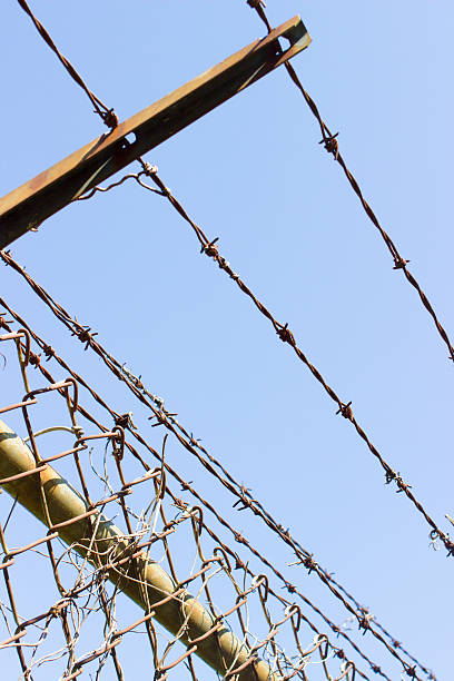 Barbed wire fence with blue sky background Barbed wire fence with blue sky background kathrynsk stock pictures, royalty-free photos & images