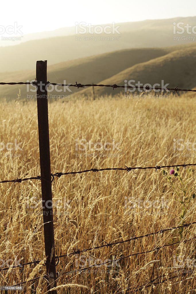 Barbed Wire Fence with Hills stock photo
