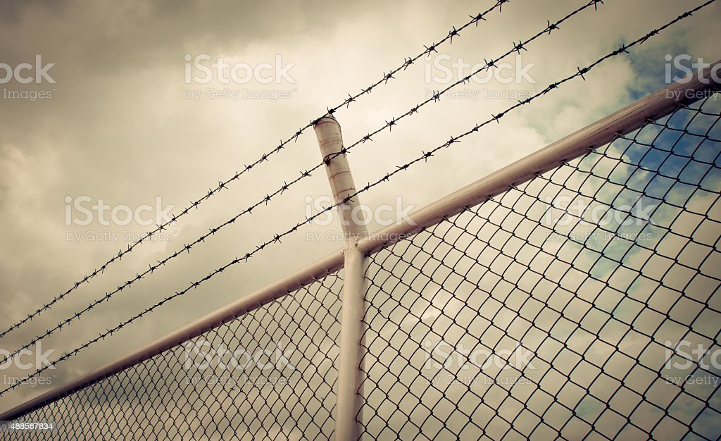 barbed wire fence,protection concept,border,saperation stock photo