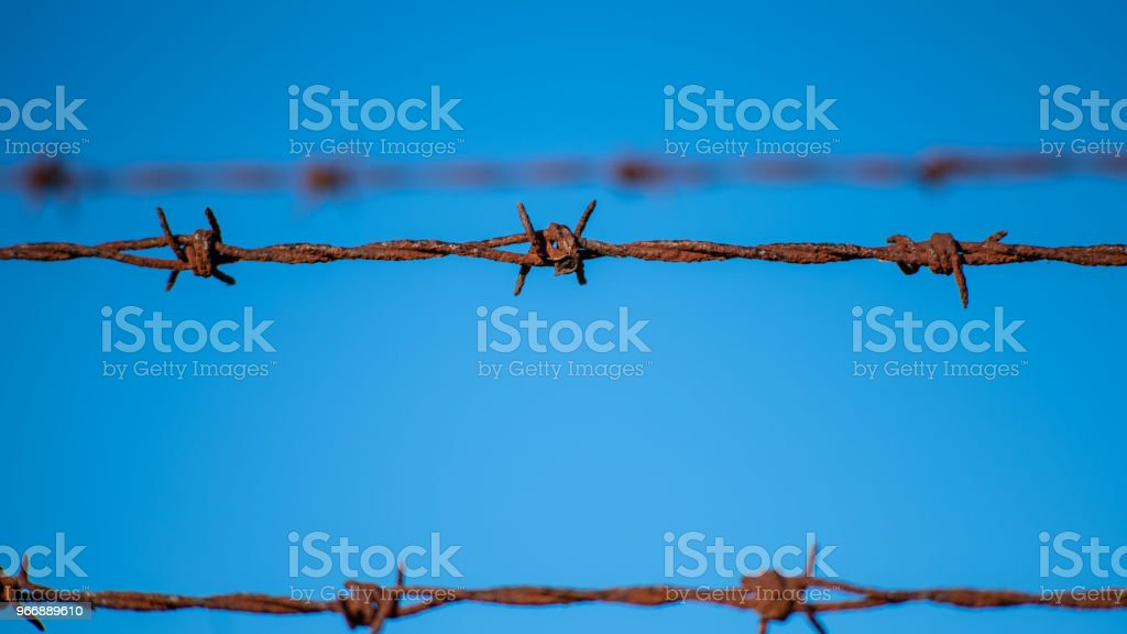 Barbed Wire Fencing stock photo