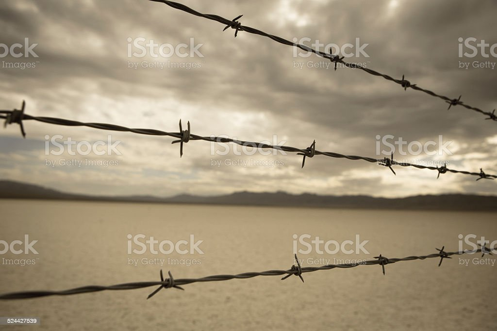Barbed Wire in desert of nevada stock photo