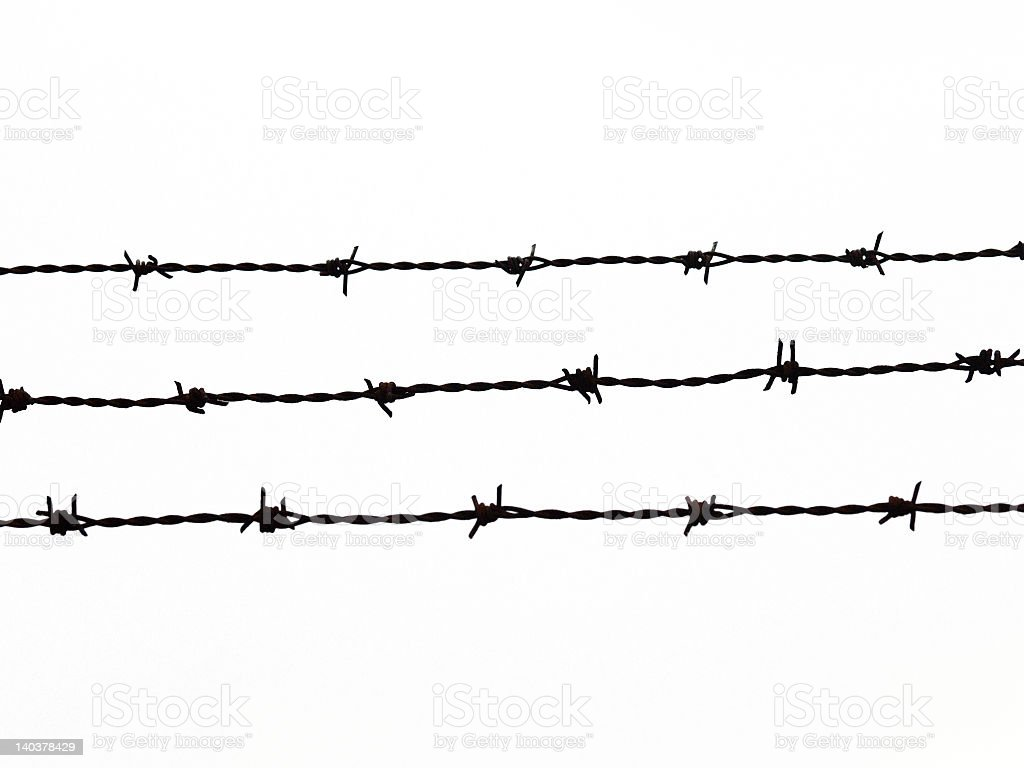 Barbed wire isolated of white background stock photo