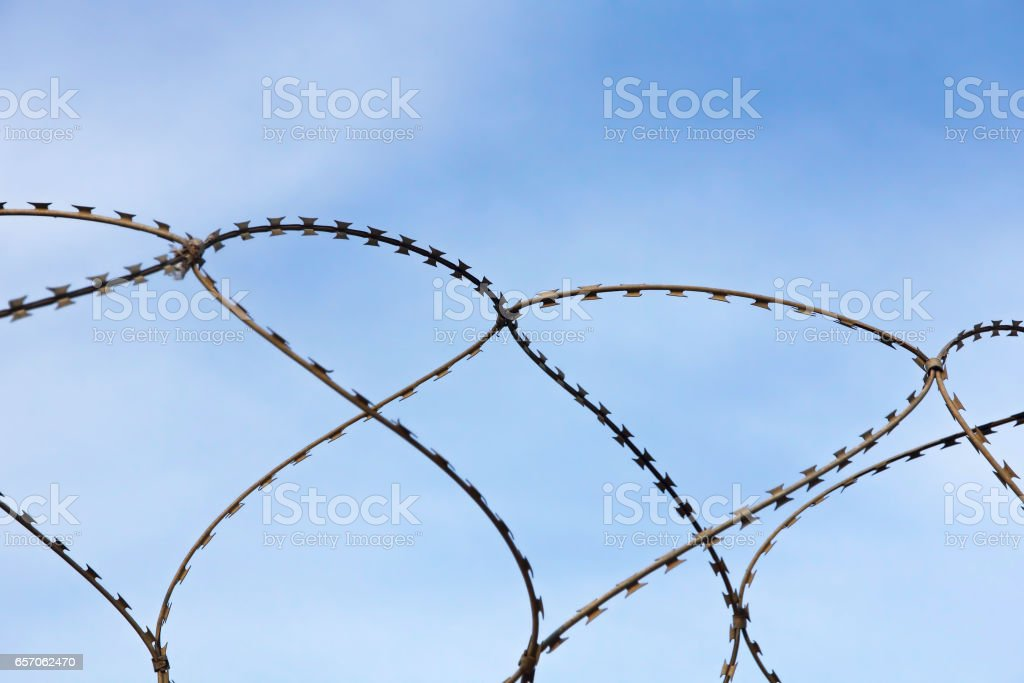 Barbed wire on blue sky background. stock photo
