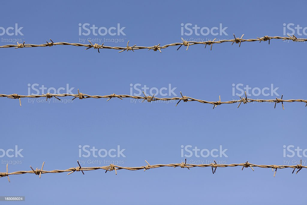 Barbed wire on blue sky royalty-free stock photo