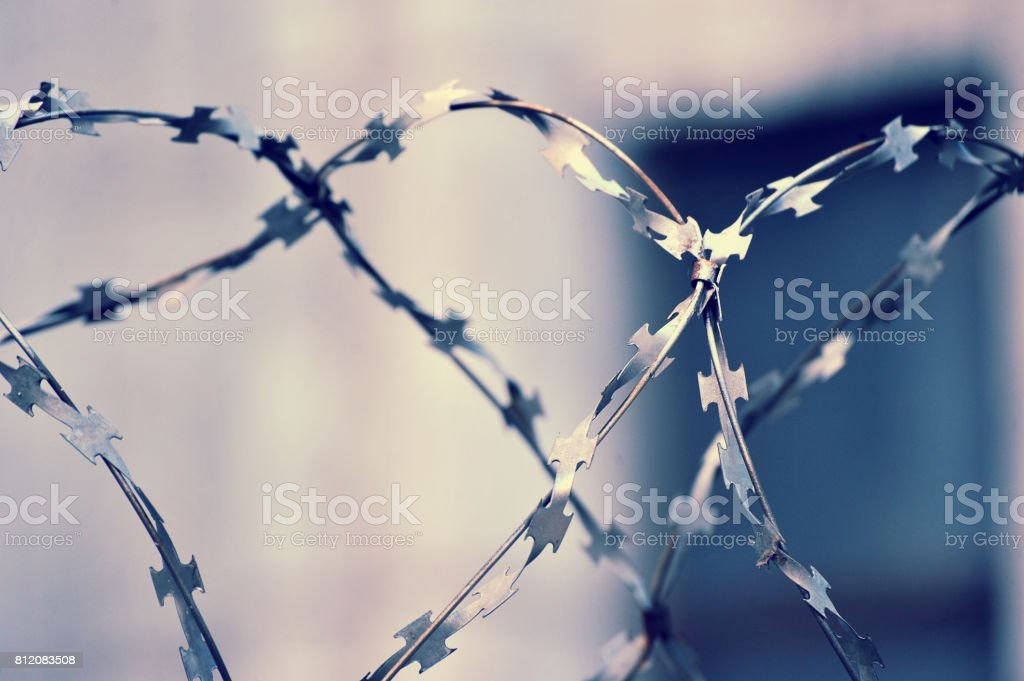 barbed wire on blurred abstract background stock photo